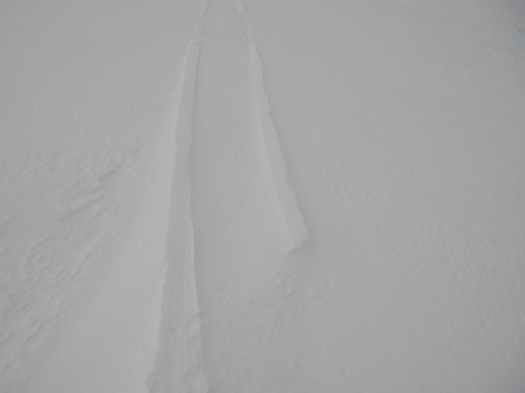 Raised snow tracks indicating wind redistribution of snowpack overnight.