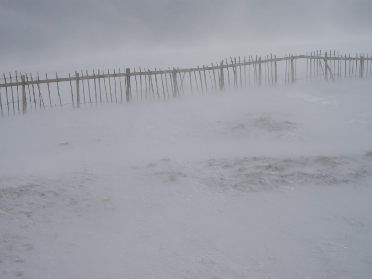 Wind transported snow sweeps along a foot above the ground